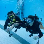 PADI Open Water Scuba Bangkok March 3